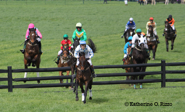 Twill Do (blue/white) in front at the second fence with Raven's Choice (pink) and Almarmooq (green/yellow) right on his heels.