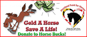 Maryland Fund for Horses