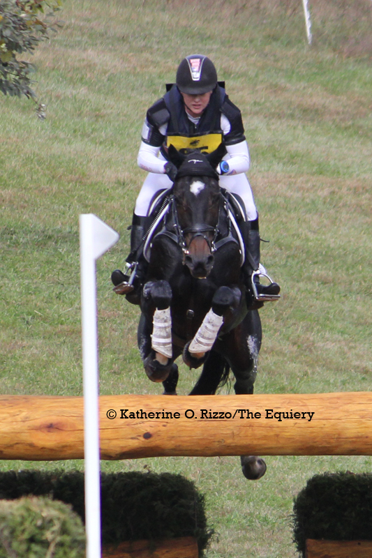 Marilyn Little and West Indie over the Centerpiece Oxer (20A) on the CCi3* course.