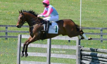 Steeplechasing Heats Up