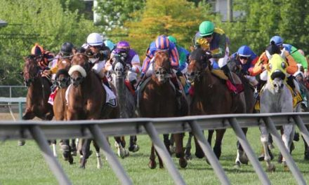 "Maryland Adopts ""Graded Stakes"" Testing"