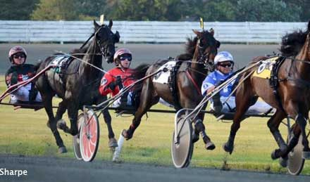A New Era of Harness Racing at Rosecroft