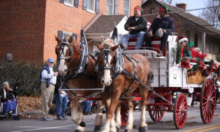The horses are back! The horses are back! Deadline for Christmas Parade: Sept. 30