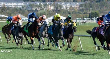 Maryland's Thoroughbred Heritage Highlighted at 31st Maryland Million