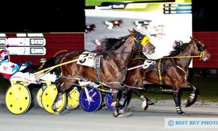 All Bets Off wins $100,000 Potomac Pace