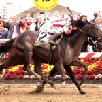 Cloud Computing wins the Preakness Stakes in front of a record crowd
