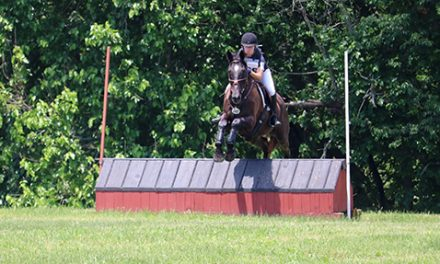 Mid-Season Eventing Leaderboard Update