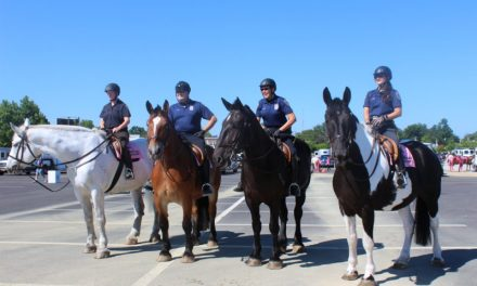 Baltimore Police Horses to stable soon at B&O Railroad Museum