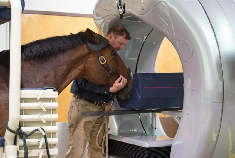 Dr. James Brown positions a patient for a standing CT on EMC's new Pegaso High-Definition CT, the first of its kind on the East Coast.
