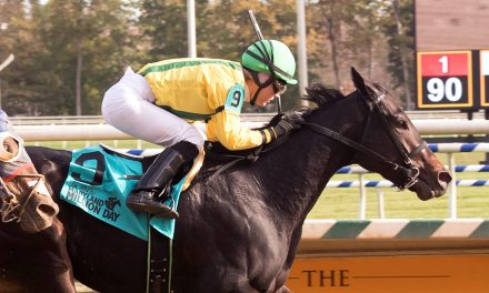 Maryland Horse Breeders Association Announces 2017 Champions