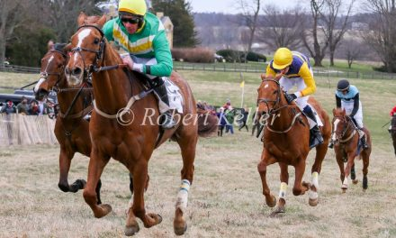 Ebanour & Certain Swagger Lead MSA Open Timber Standings