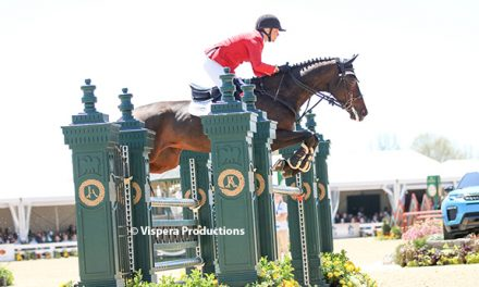 Little Emerges at Top US Rider at Land Rover 4*