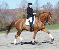 Dorie and Froelich warming up for a Third Level test ©Shari Glickman