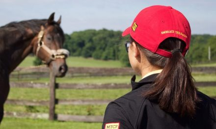 Maryland Thoroughbred Career Program's Second Year a Success