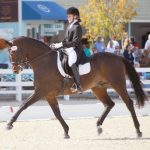 New Awards & Championships for Dressage Riders