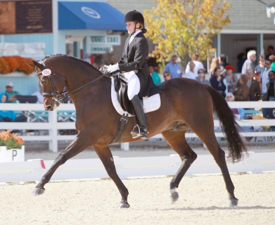Alexa and Feur made their Dressage at Devon Debut in 2013.