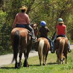 Do's and Don'ts of Trail Riding  on Maryland's Public Lands