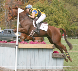 Mary Macklin of Red Hawke Eventing at the 2012 FHI CCI** aboard her own OTTB Majogany Beauteo