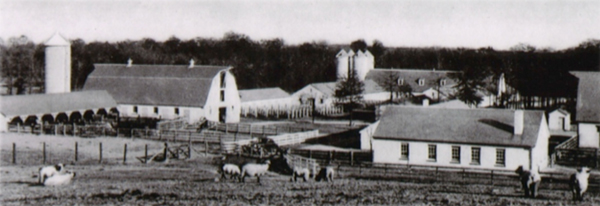 The Campus Farm in 1953