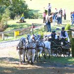 American Driving Society splits from USEF