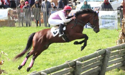 Maryland Horses Sweep Genesee Valley Hunt Races