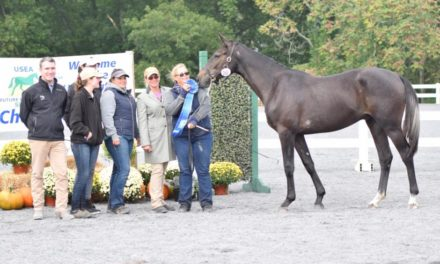 Event Horse Futurity Started Here on the East Coast