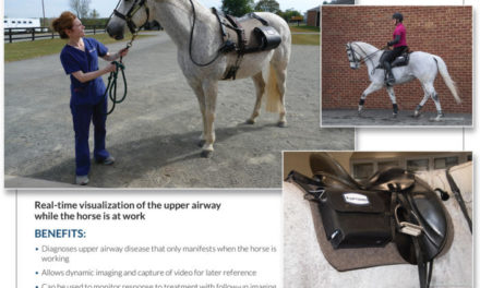 Respiratory Diagnosis On the Move – Marion duPont Scott Equine Medical Center