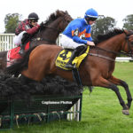 Zanjabeel Named Eclipse Steeplechase Horse of the Year