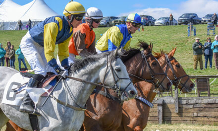Spring Steeplechasing Kicks off at Green Spring