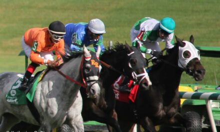 MTHA & MHBA Issue Joint Statement on Race Day Medications