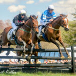 Wins at the Manor Shake Up Gov Cup Standings