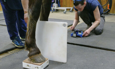 Hoof Mapping with Metron-DVM – Marion duPont Scott Equine Medical Center