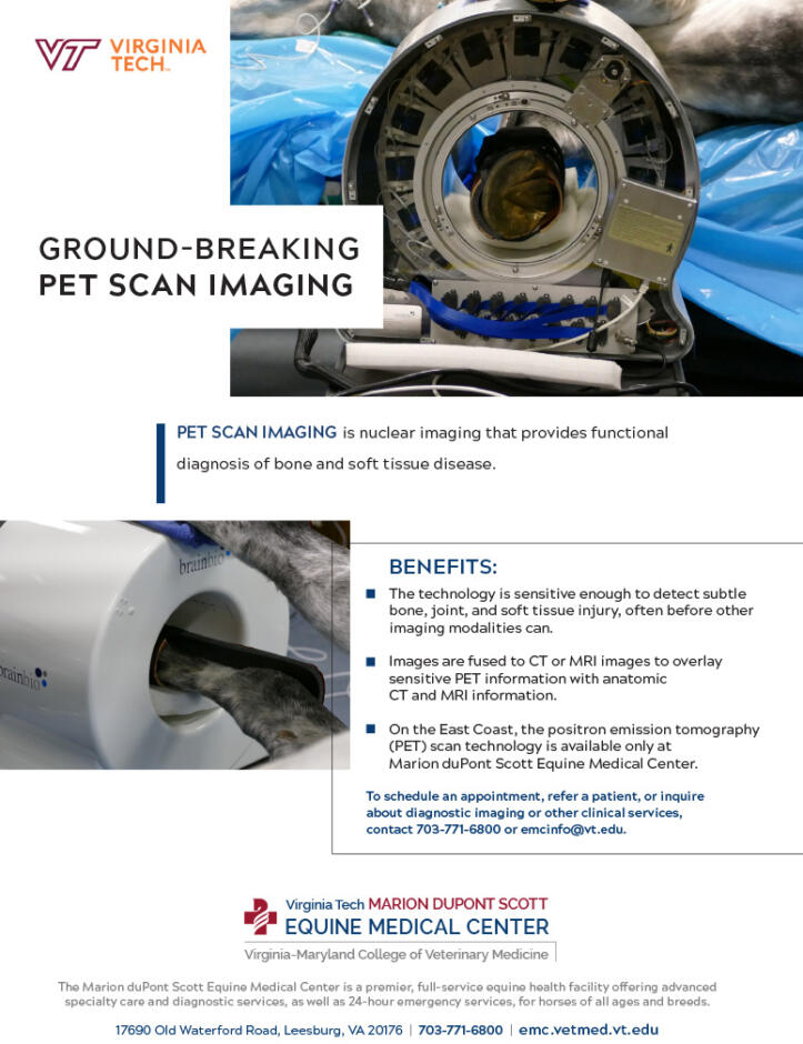 PET Scan Imaging - EMC