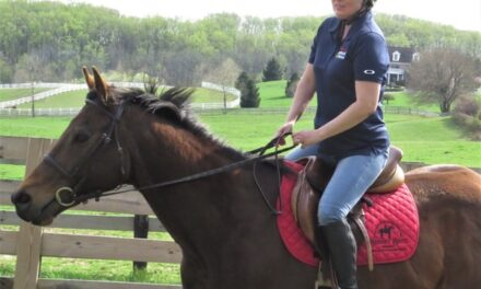 Thoroughbred Therapy