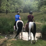 Promoting & Protecting Maryland's Trails