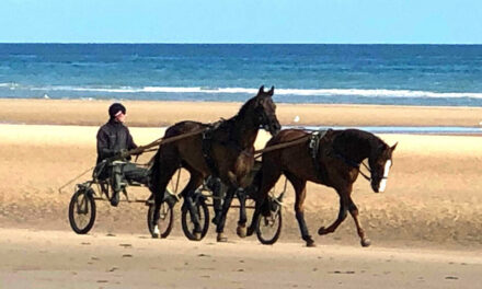 Maryland Horse Industry Board Heads to France