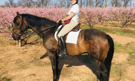 Jane Thery: Bridging the Gap Between Horse Farms  and the Environment