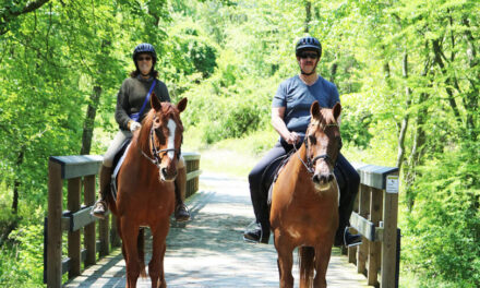 Recreational Riding Sector Grows During Pandemic