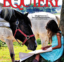 About this month's cover: Days End Farm Horse Rescue