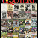About this month's cover: Happy Birthday Equiery!