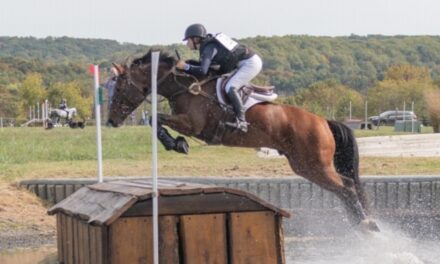 Eventers Earn Top Honors