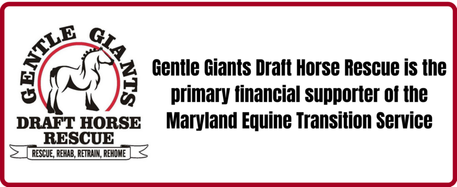 GGDHR-METS Primary Financial Supporter