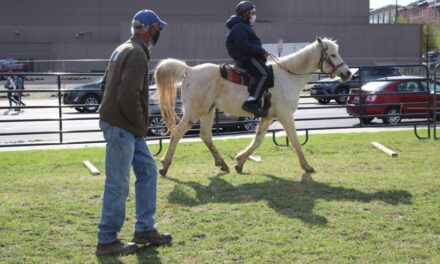 MD's Young Riders: Horseback Riding in West Baltimore
