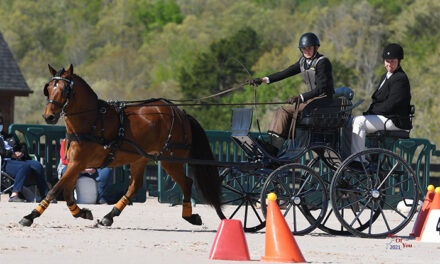 MD's Young Riders: Riley Wiltison Continues to Shine