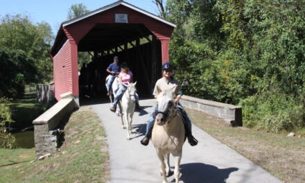 Equiery Readers' Top Park Picks to Trail Ride